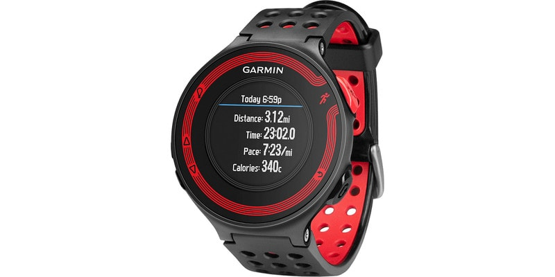 GarminForerunner 220